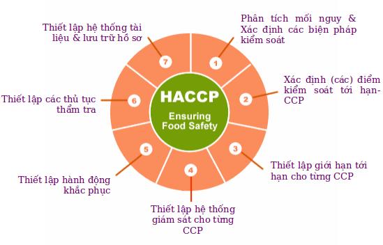 Tiêu chuẩn HACCP là gì và đối tượng áp dụng tiêu chuẩn HACCP